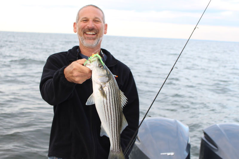a rockfish caught at belvidere shoals