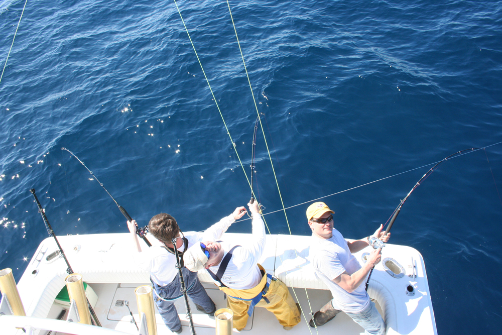 jigging for bluefin tuna
