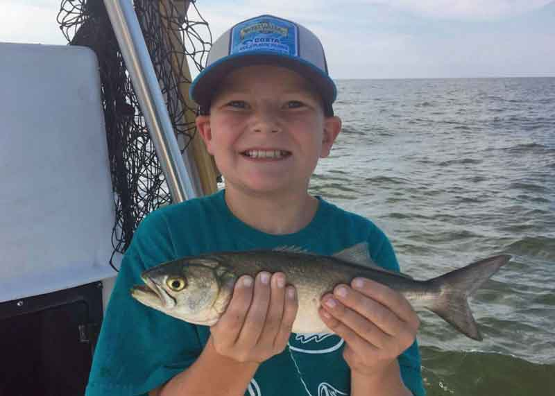 boy holds up a bluefish he caught fishing