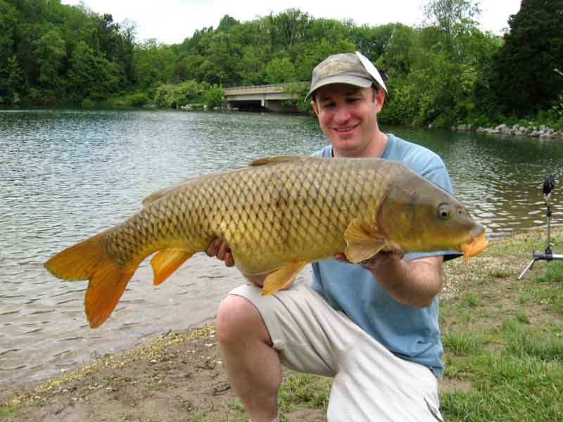 an angler with a big carp