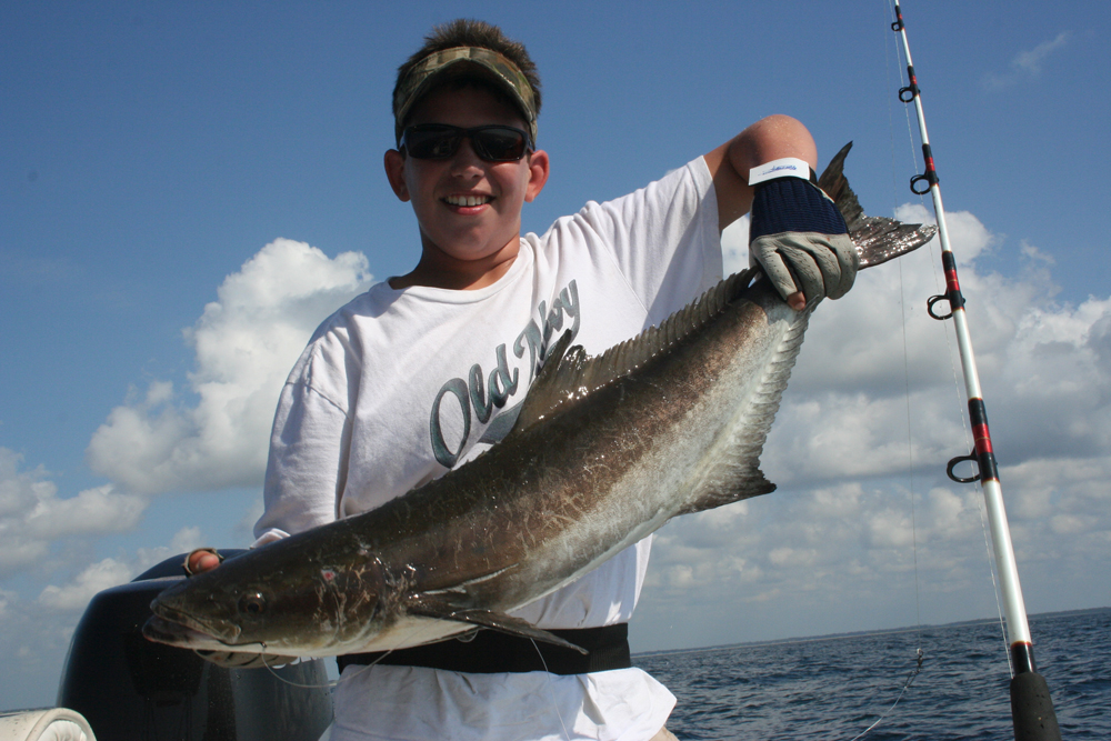 fishing cobia