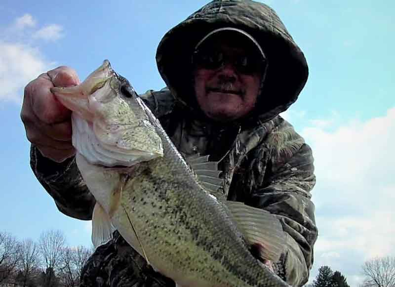 largemouth bass caught pre spawn