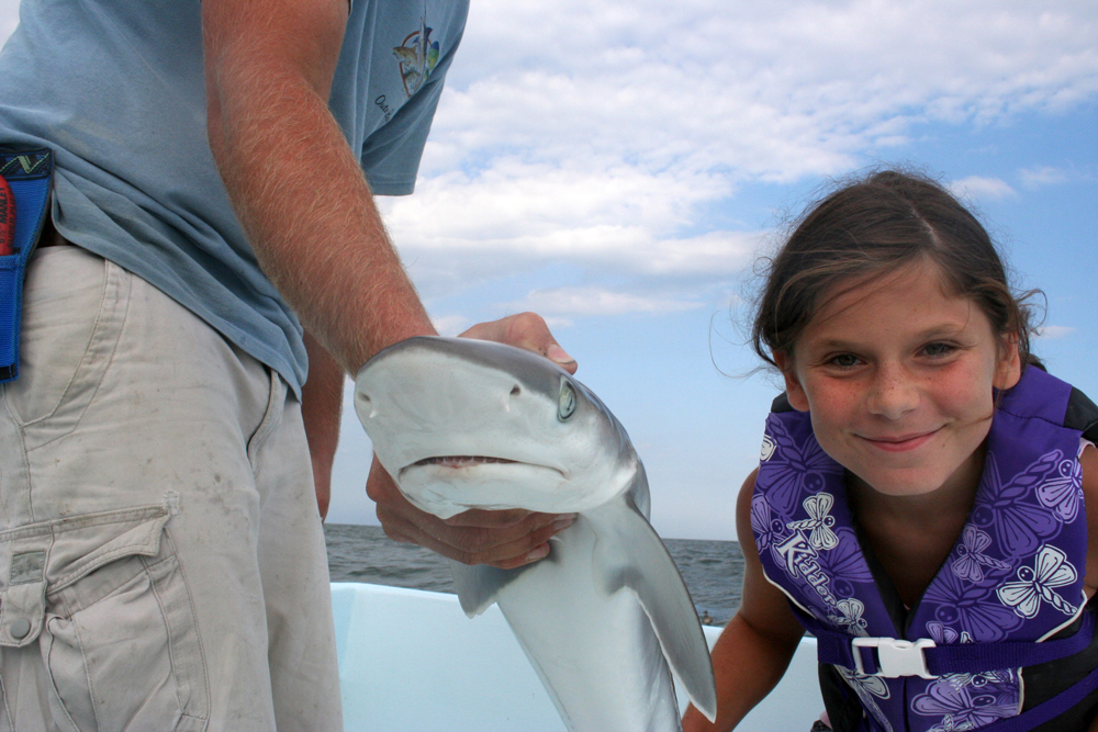 shark and girl conservation for fisheries