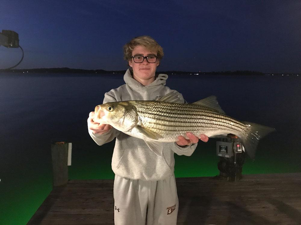 November 2017 upper chesapeake bay fishing report for Chesapeake bay bridge fishing report