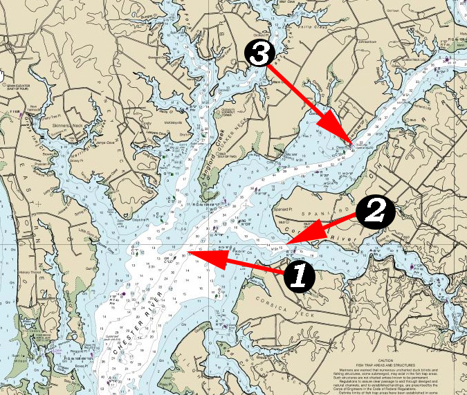 chester river fishing hotspots