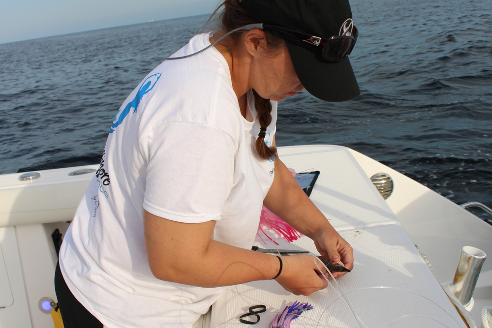 womans offshore alliance fishing