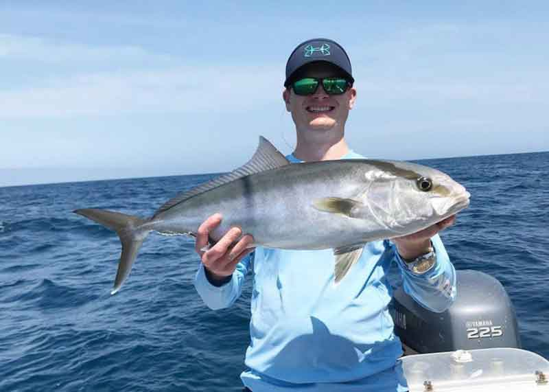 Amberjack were a part of the mix.