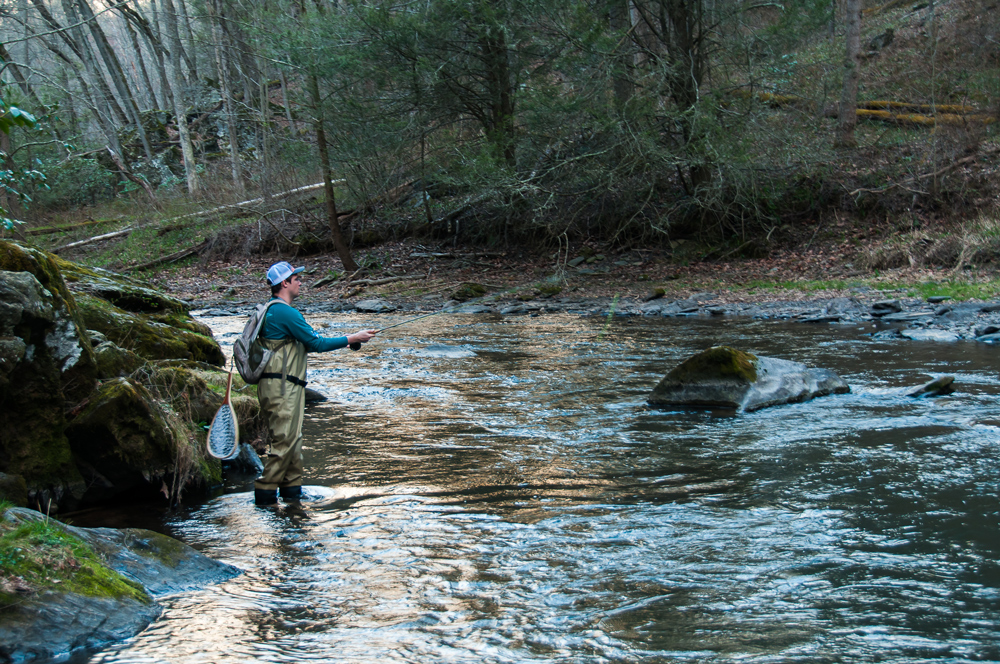 fly fishing for trout on the gunpowder river