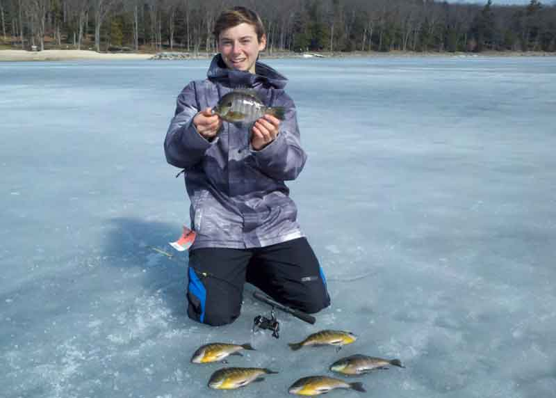 ice fishing for bluegills