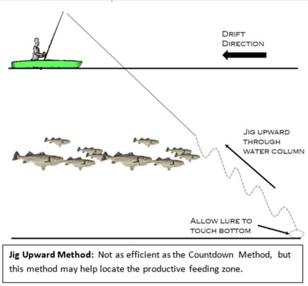 method of jigging for fish