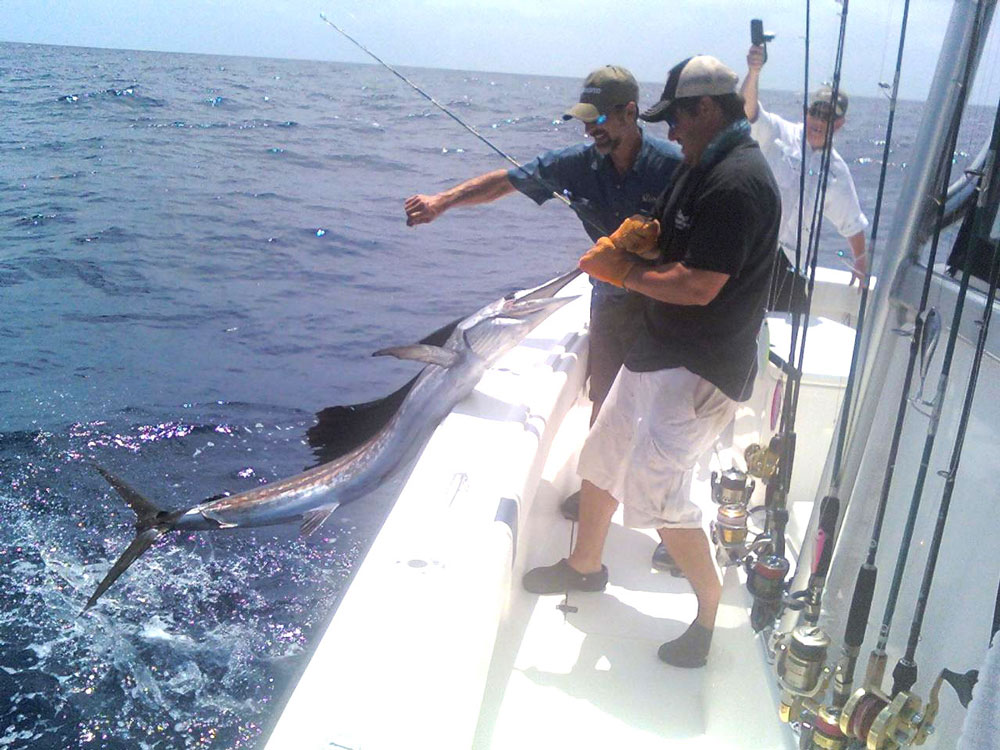 sailfish fishing miami florida
