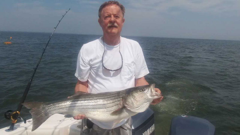 rockfish on the bay