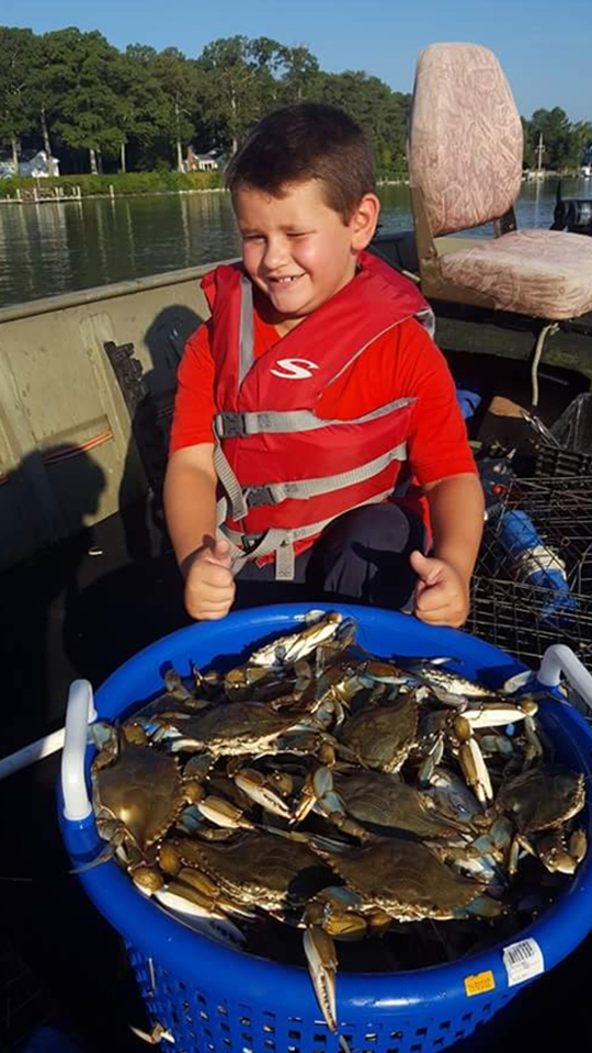 crabs from chesapeake bay