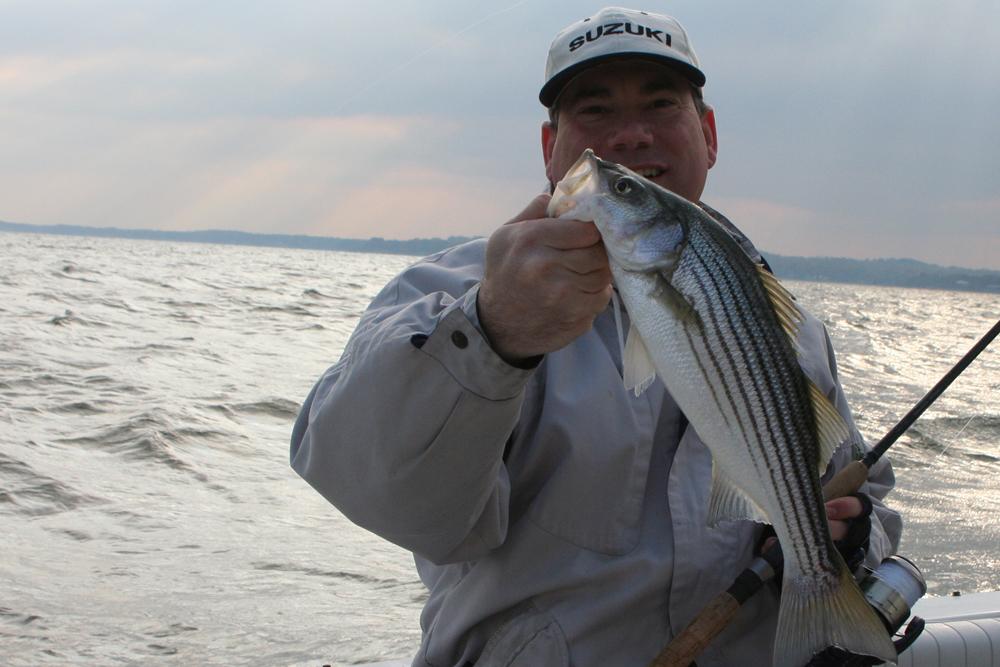 February 2018 upper chesapeake bay fishing report for Chesapeake bay bridge fishing report