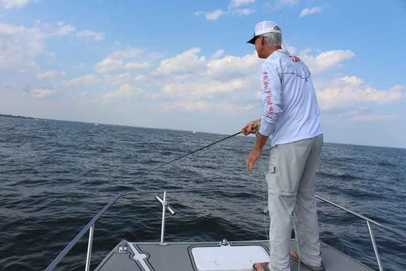 angler fly fishing in Chesapeake Bay