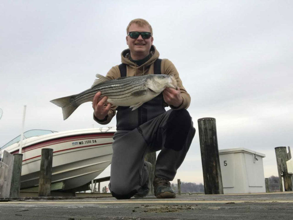 December 2017 middle chesapeake bay fishing report for Lower chesapeake bay fishing report