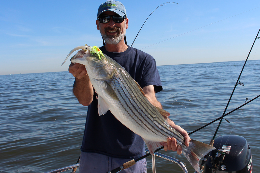 jig fishing for striped bass