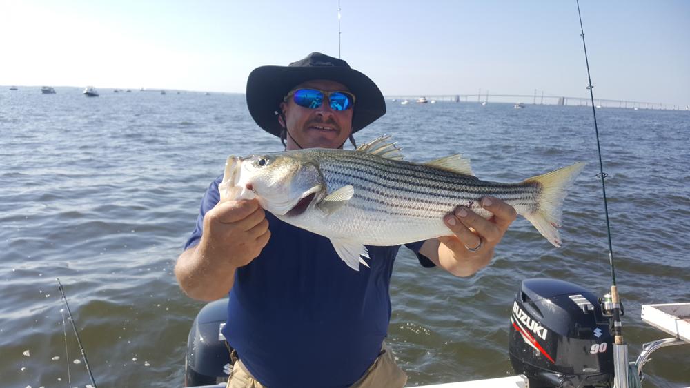 June 2017 upper chesapeake bay fishing report fishtalk for Middle keys fishing report