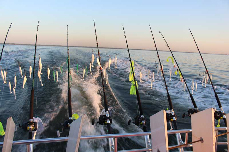 trolling rods and reels on a boat