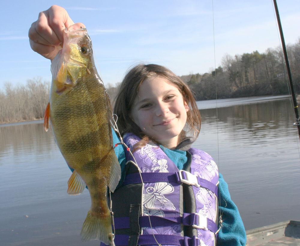 fishing for yellow perch in tidal rivers